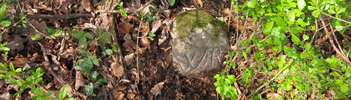 Von Grenzen und Steinen